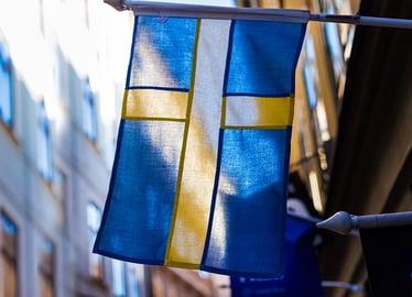 Swedish Flag 2