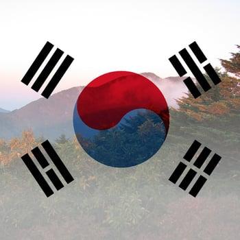 SouthKorea2.jpg